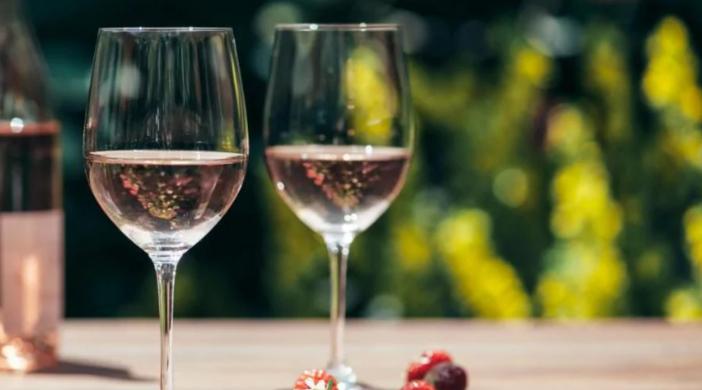 Route de vins : la découverte des vignobles à vélo